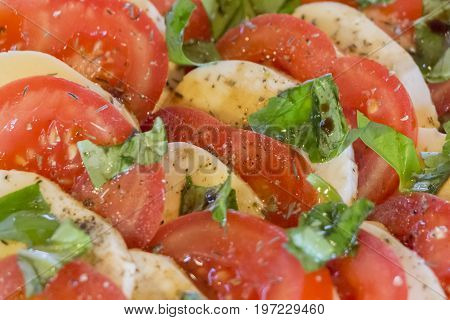 Delicious tomatoes and mozzarella chopped in salad starter row. Wonderful vegetarian vegan appetizer. Green bio and local food. Tomato and cheese in rows with herbs and basil. Healthy nutrition.