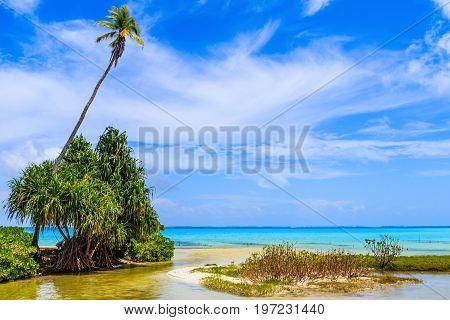 Tabuaeran Fanning Island Republic of Kiribati.Tabuaeran beach on the Fanning Island Republic of Kiribati