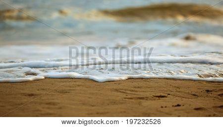 Closeup Of Salt Water Foam On The Sand.
