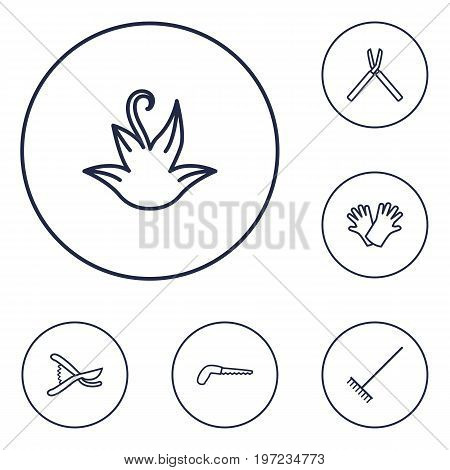 Collection Of Herb, Secateurs, Shears And Other Elements.  Set Of 6 Household Outline Icons Set.