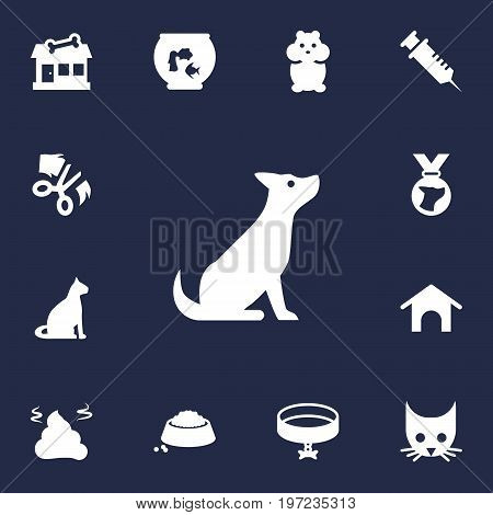 Collection Of Neckband , Food , Store Elements.  Set Of 13 Animals Icons Set.
