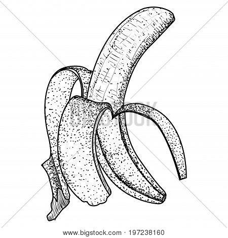 Isolated Vintage Peeled Banana