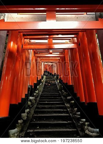 Many Japanese Tori gates lined up in a row at Fushimi Inari in Kyoto Japan. A place with thousands of Tori gates lined up over a path with steps that lead to top of a mountain.