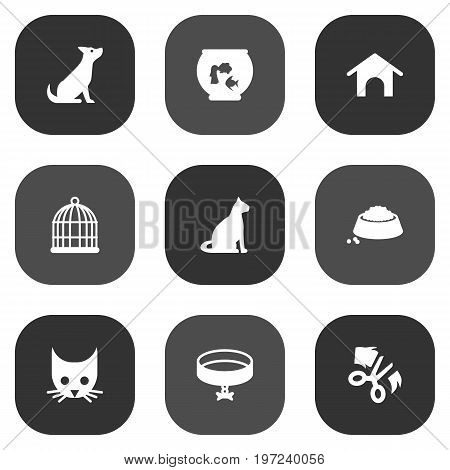 Collection Of Fishbowl, Sitting, Cat And Other Elements.  Set Of 9 Pets Icons Set.