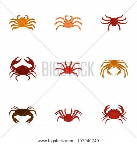 Different crab icons set. Cartoon set of 9 different crab vector icons for web isolated on white background