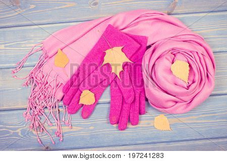 Vintage Photo, Gloves With Shawl For Woman And Autumnal Leaves, Clothing For Autumn Or Winter