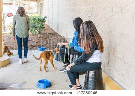 Fairfax, Usa - February 18, 2017: Girls Tending Dogs That Are Up For Adoption Outside Of Petsmart