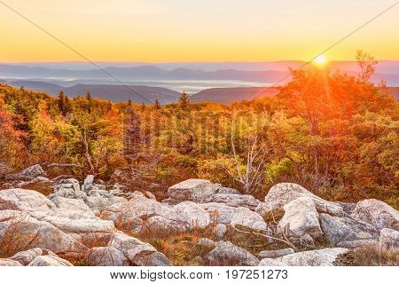 Bear Rocks Sunrise During Autumn With Rocky Landscape In Dolly Sods, West Virginia