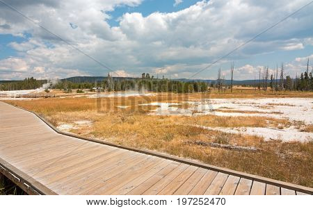 Wooden Observation Catwalk through the Black Sand Geyser Basin in Yellowstone National Park in Wyoming USA
