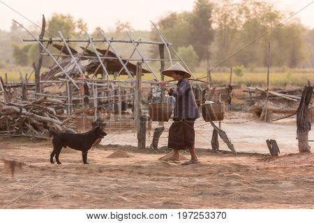 Farmer Ancient saltWoman working on salt field in ThailandAncient salt makingcareer in salt farming is reserved for Thai people.
