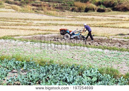 Farmer use agriculture machine mini tractor preparing land for planting at Punakha District Bhutan