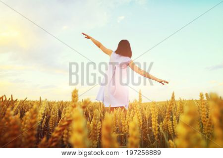 Woman with hands wide open on sunny evening sky background. Girl stands in golden wheat field. Freedom concept.