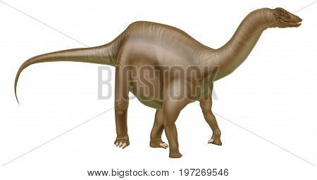 A Diplodocus dinosaur from the sauropod family like brachiosaurus, supersaurus and other long neck dinosaurs. What we used to call brontosaurus