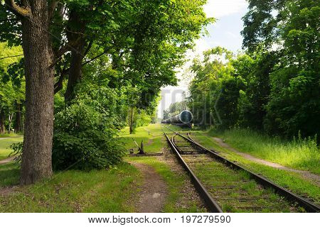 The railroad train with the tanks stands on rails among the green trees on a summer sunny day