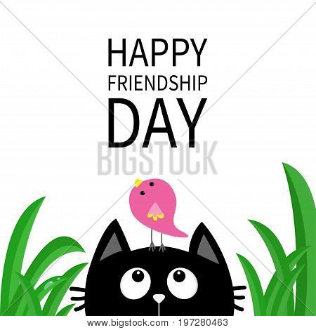 Happy Friendship Day. Cute black cat looking up to bird on head. Funny cartoon character. Kawaii animal. Kitty kitten. Baby pet collection. White background. Green grass. Isolated. Flat design. Vector