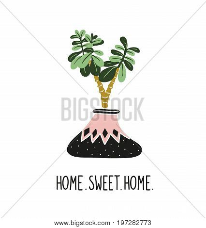 Hand drawn tropical house plants. Scandinavian style illustration modern and elegant home decor. Vector print design with lettering - ' home sweet home ' and crassula. Money tree.