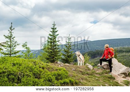 Woman hiking with akita inu dog on mountain trail. Recreation and healthy lifestyle outdoors summer in mountains and woods inspirational nature. Fitness sport trekking and activity concept.