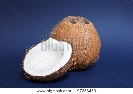 A pair of tasteful coconuts on a dark blue background. A close-up of a fresh coconut cut in half and a hard coco. Healthful summer fruits. Exotic ingredients for vegetarians.