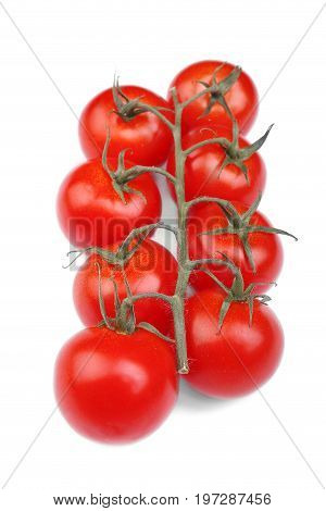 A top view of a bunch of fresh saturated red tomatoes with leaves, isolated on a white background. A close-up of ripe and raw tomatoes. Little cherry tomatoes. Healthy and rustic vegetables.