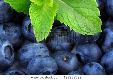 A close-up of freshly picked blueberries and light green peppermint leaves. Tasteful blueberries for a background. Fresh and sweet blueberry fruit for nutritious and healthful diets.