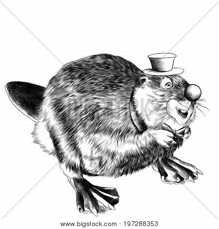 beaver stands on its hind legs the clown in the hat sketch vector graphics black and white drawing