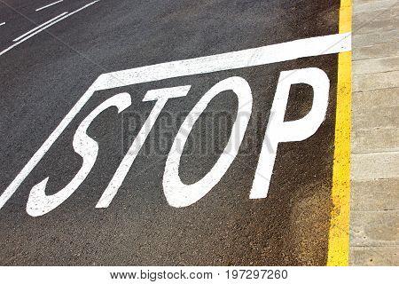 Stop road markings, painted in white on the asphalt