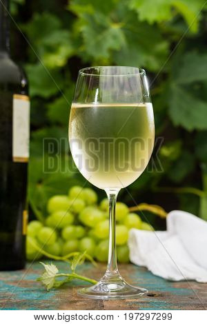 Wine Bottle And Wine Glass With Ice Cold White Wine, Outdoor Terrace, Wine Tasting In Sunny Day, Gre