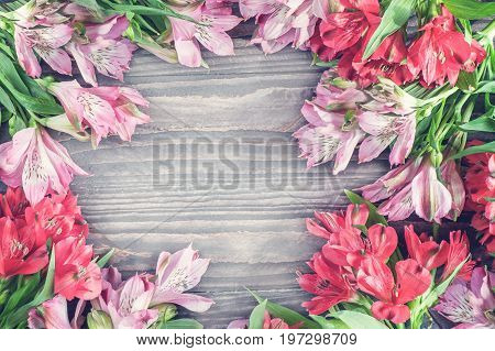 Beautiful background of red and pink Alstroemeria flowers on wood background. Tinted glass. Copy space. The horizontal frame.
