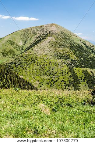 Stoh hill with mountain meadow in Mala Fatra mountains in Slovakia