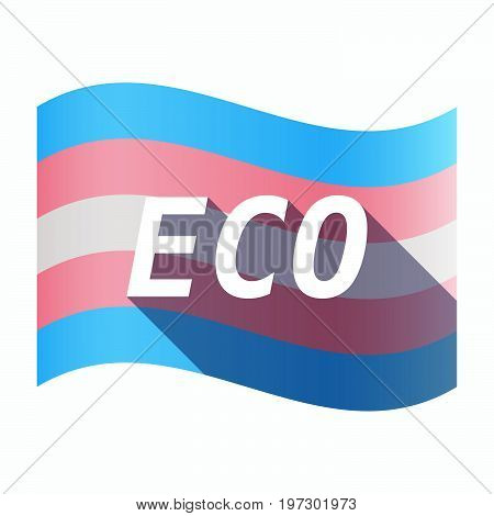 Isolated Transgender Flag With    The Text Eco