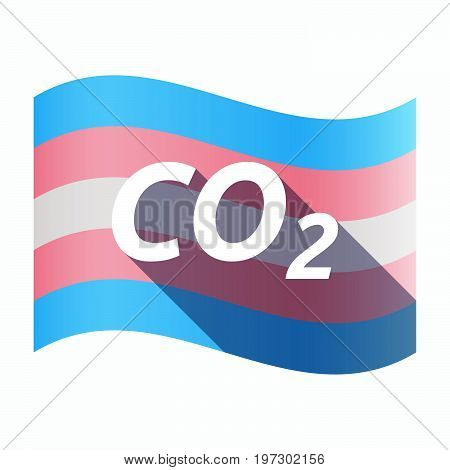 Isolated Transgender Flag With    The Text Co2