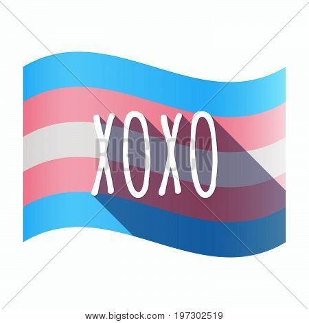 Isolated Transgender Flag With    The Text Xoxo