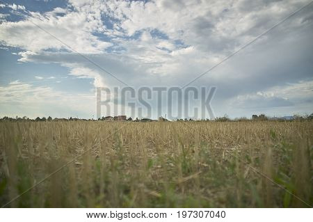 A Simple Rural Landscape