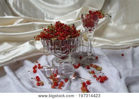 beautiful fresh juicy appetizing red currant berry in crystal glass romantic dessert