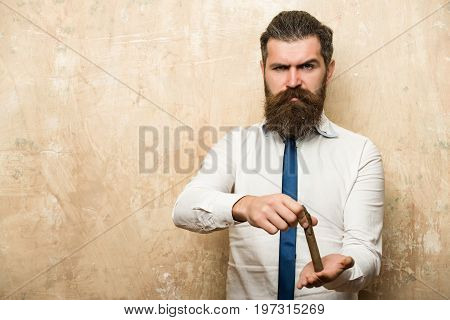 hipster or bearded man with long beard and stylish hair on angry face in tie and white shirt on textured beige background extinguish cigar in hand copy space