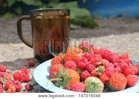 glass cup with green tea and plate full juicy ripe strawberries and raspberries nice summer break