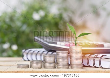 tree growth up and stacked on coins concept in save money of business finance economy and account bank