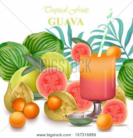Smoothie Guava and goo fruits realistic Vector isolated on white background