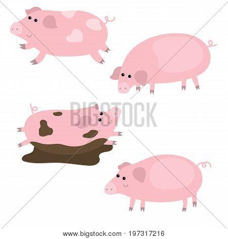 Set Of Cute Pigs