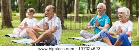 Group of senior people practicing yoga in park