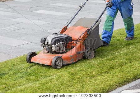 Mowing The Lawn In The Park