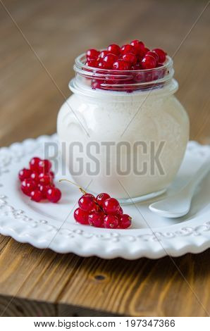 Panna Cotta With Honey And Red Currant