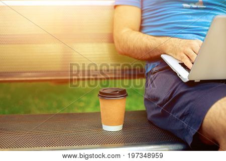 Freelance work. Casual dressed man sitting at wooden beanch inside garden working on computer.. Sun flare