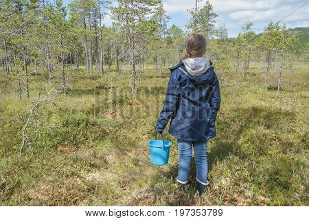 Girl picking berries in forest, family activity