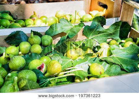 Figs On The Counter At Omis Street Market Croatia