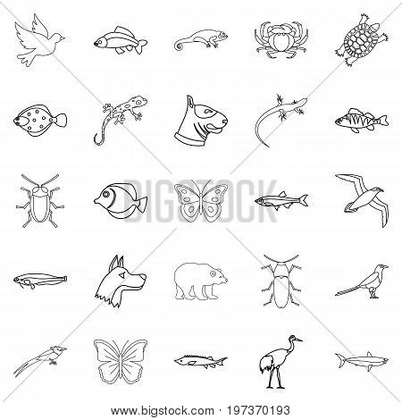 City animals icons set. Outline set of 25 city animals vector icons for web isolated on white background