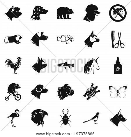Dogs icons set. Simple set of 25 dogs icons for web isolated on white background