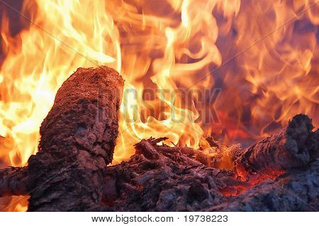 Creative Fire with logs close up