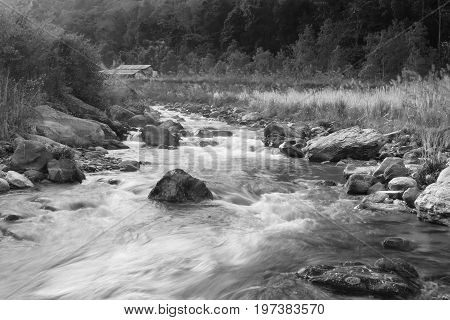 Beautiful Reshi River water flowing through stones and rocks at dawn Sikkim India. Reshi is one of the most famous rivers of Sikkim flowing through the state and serving water to many. Black and white image.