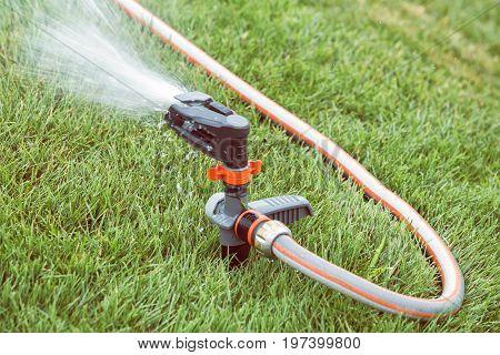 Garden Lawn Sprinkler In Action 4
